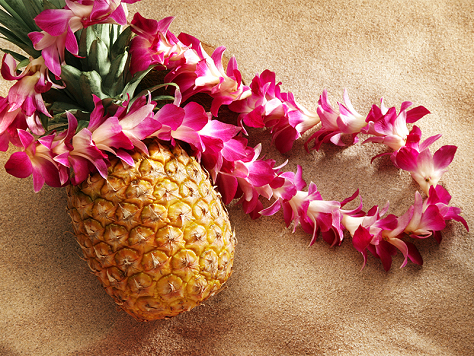 Hawaiian Necklaces - dressing up
