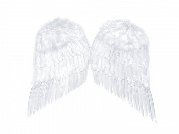 Angel's wings, white, 55 x 45cm