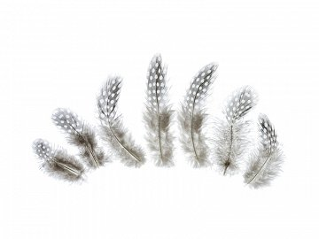 Decorative feathers, brown, 5-9cm (1 pkt / 50 pc.)