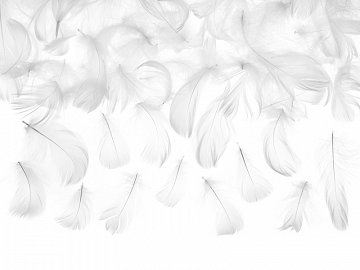 Decorative feathers, white, 3g
